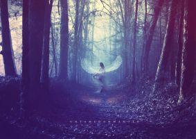 Angels in the Forest by UntamedUnwanted