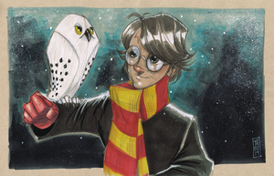 Harry and Hedwig by Hodges-Art