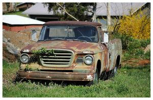 Studebaker Truck Rusting Away by TheMan268