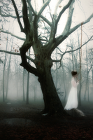 The Hanging Tree by Larimar