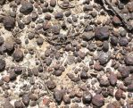Gravel Texture 2. by Jiko-Stock