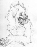 Angry wolf by Slaggot
