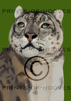 Snow Leopard - WIP 1 by prints-of-hooves