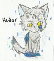 Hudor adopt try out 3 by luna-howltothemoon