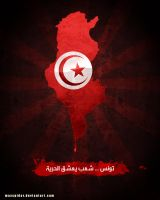Tunisia ... The Revolution by maxspider