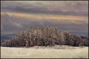 Winter view by neith13