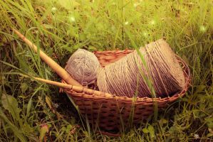 yarn and the spindle by Willborg