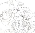 Sonadow Family n Amy Rose by Narcotize-Nagini