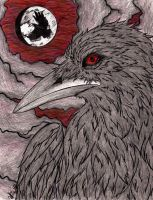 Red Eyed Crow by ajbluesox