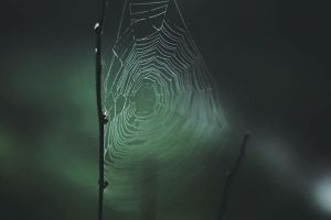 Thin Strands-2 by Art-Of