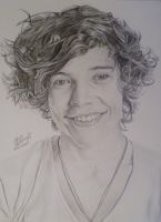 Harry Styles by VictoriaSh