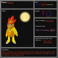 Application form for Explorers of Chaos by Icedragon300