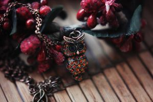 Owl for Christmas by BlueColoursOfNature