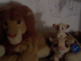 Simbas hanging out in my room :P by Heatherannpt