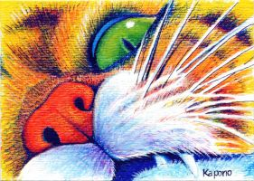 ACEO Mouse's view by MandarinMoon