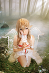 Asuna Queen Titania - Sword Art Online Cosplay II by ArashiHeartgramm