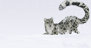 Speedie of the Week10 SNOWMEOW by Falcolf