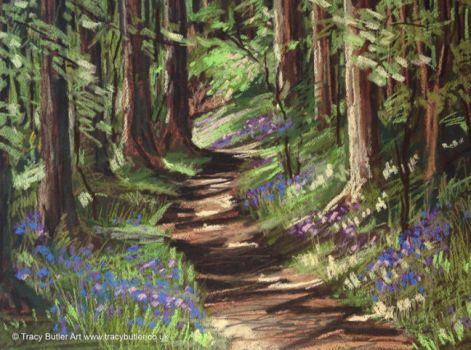 Sunshine and Shadows by tracybutlerart