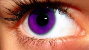 Purple eye by MimKa