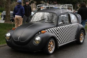 Checker Bug by indigohippie