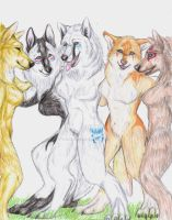 PC2: wolfdemonlover1 by Wolven-Sister