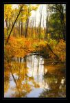 Autumn in New York_2009 by JennBowers