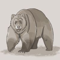 Day 5: Grizzly Bear by amandas-sketches