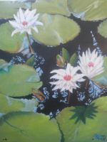 Lily pads by Jessercahh