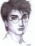 Harry Potter by icejade