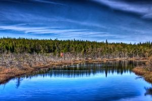 Cabin on the River HDR by Witch-Dr-Tim