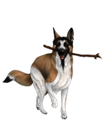 Commission: Panda GSD on HDF (1 of 2) by LizzardDraws