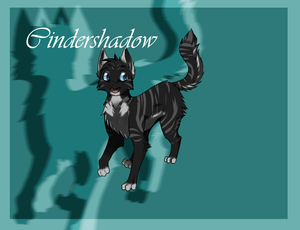 Cindershadow commission by Sno-wy