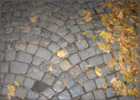 brick road by pery
