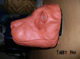feline basic head by TabbyPaw