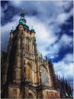 Holy by baumwolle