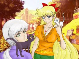 Cats and Kous by Sillabub429