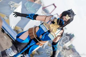 Mortal Kombat, Kitana: ''I know of many'' by 14vegeta