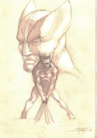 wolverine sketch by LucaStrati