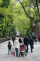 Strolling Central Park Zoo by ChrisTheJeweler
