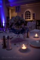Table Setting by QueenSheba24