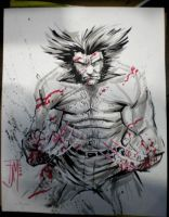 Wolverine Art Finished by manapul