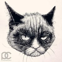 The Grumpy Cat by parin81270024