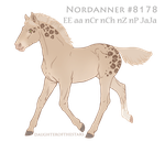 Foal# 8178 by NorthEast-Stables