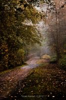 The Path by Violet-Kleinert