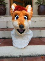 Darren Dingo Partial by LeSaVy