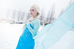 Elsa - Swirling Storm Inside by Nyxiie