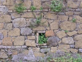 wall 03 by Caltha-stock