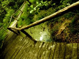 FootBridge of Nature by vlr
