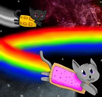 NYAN CAT X3 by sclirada