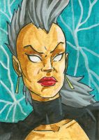Mohawk Storm Sketch Card by ibroussardart